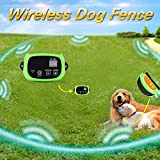 Wireless Dog Fence for Home and Field Usage with Built-in Standby Batter, PTF772-GR2 review