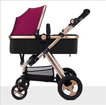Bicicleta de bebé El cochecito plegable para bebés recién ...