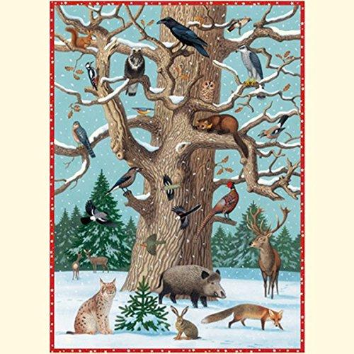 Tiere im Winter (Adventskalender) Kalender – Adventskalender, 1. September 2009 Thomas Müller Coppenrath B001TPWQKM 70003