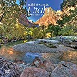 Utah, Wild & Scenic 2019 7 x 7 Inch Monthly Mini Wall Calendar, USA United States of America Rocky Mountain State Nature