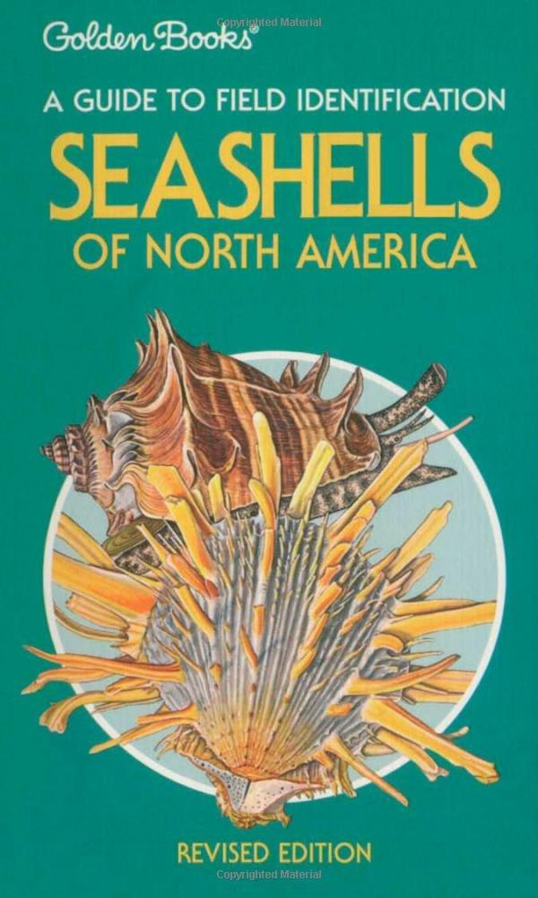 Download Seashells of North America: A Guide to Field Identification pdf epub