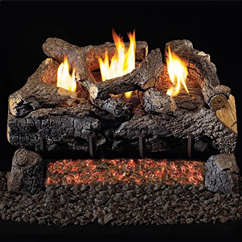 Peterson Real Fyre 24-inch Evening Fyre Charred Log Set With Vent-free Natural Gas Ansi Certified G18 Burner - Electronic Non-standing Pilot And Variable Flame Remote ()