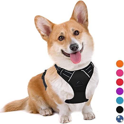 Anbeer No Pull Dog Harness Soft Padded Heavy Duty Pet Vest for Medium and Large Dogs Orange,S Reflective Stripes