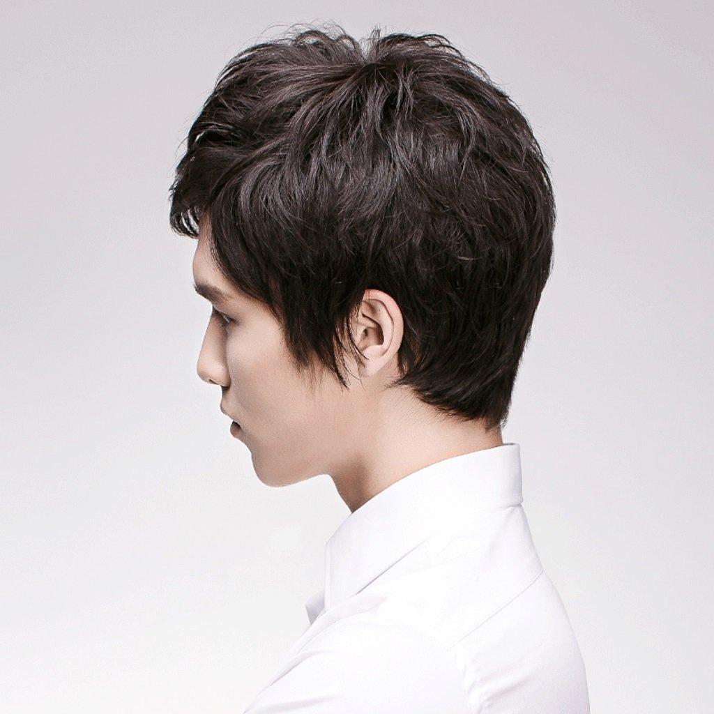 Peluca Peluca de pelo corto europeo y americano de los hombres de moda natural esponjoso masculino de alta calidad Pelucas: Amazon.es: Belleza