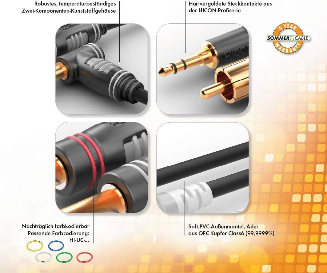 HBP-M2C2 6m 2 x XLR 3 Points m/âle Hicon vers 2 RCA Hicon Sommer Cable Basic