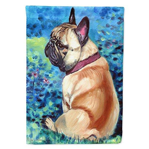 french bulldog fawn - 5