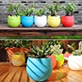 Hot Sale!DEESEE(TM)Mini Colourful Round Plastic Plant Flower Pots Home Office Decor Planter