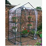 LARGE WALK IN GREENHOUSE WITH DOUBLE SHELVES PVC COVER OUTDOOR GARDEN PLASTIC