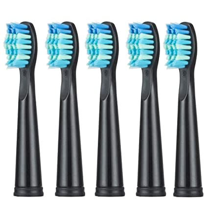 Amazon.com: Electric Toothbrush USB Charge Rechargeable Tooth Brushes Value Spree Mysterious Birthday Gift Surprise Christmas Day 5pc brush head-Black: ...