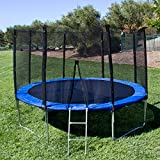 FCH 12 Feet Round Trampoline Safety Enclosure PE Protecting Wire Net and Pole, TUV Certificate Steel Ladder, Spring Pad, Jumping Mat