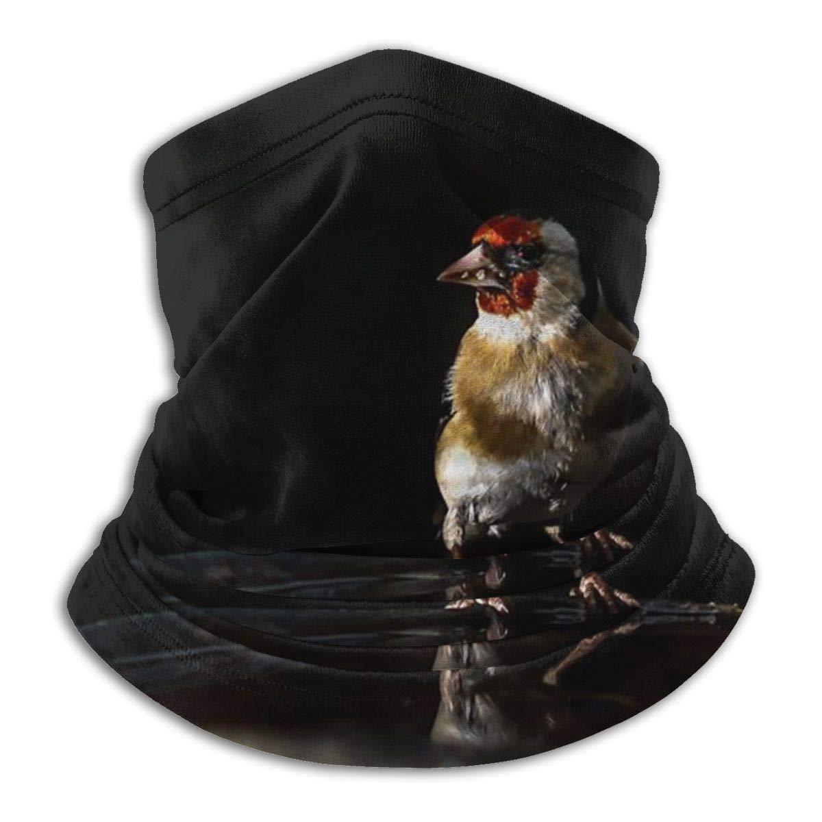 Timdle Scaldacollo in Pile Ghetta Cardellino Appollaiato su Un Bagno di Uccelli Morbido Copricapo in Microfibra Sciarpa facciale Maschera per Freddo Invernale e Tenere Caldo per Uomo Donna