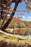 Spring Break at the Lake House (Annette Vetter Adventures Book 7)