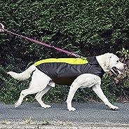 Dog Raincoat, Sport Indoor Outdoor Jacket with Waterproof Windproof Outer Layer and Warm Fleece Inner Vest App