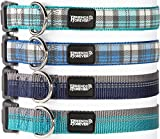 Plaid Dog Collar for Dogs, Fashion Woven Checkers Pattern, Cute Puppy Collar by Friends Forever, Green Small 11-16'