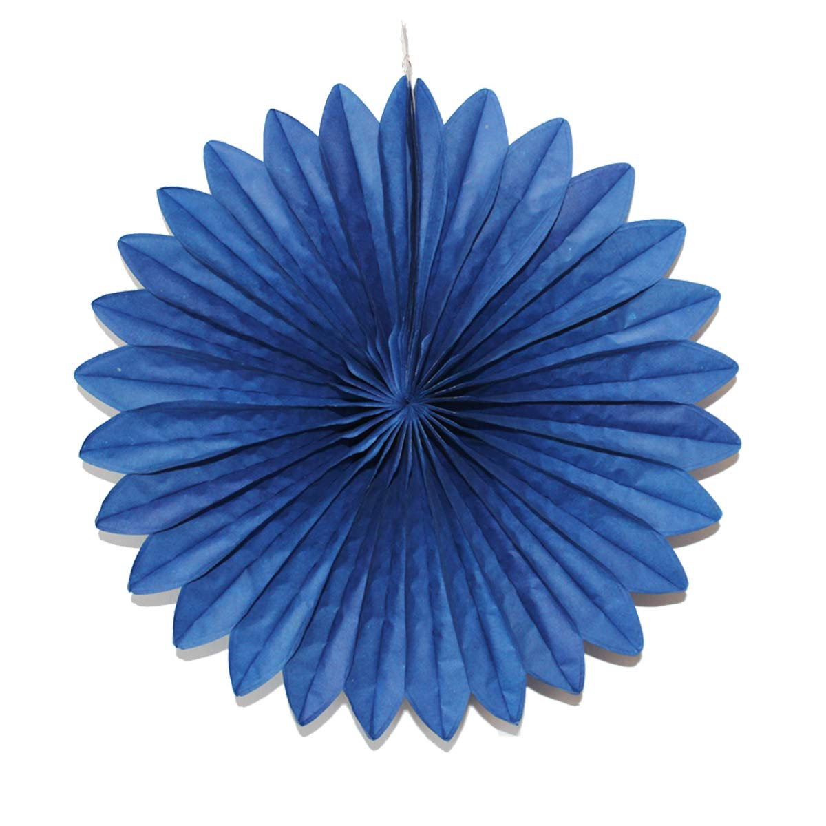Royal Blue, Round-16 Dailygo 5pcs Hanging Paper Fans Party Paper Fan Decoration Tissue Paper Fans Honeycomb Paper Pom Poms Wall Backdrop Wedding Birthday Decor