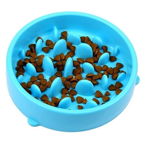 Sea pioneer cuenco para perro con comedero lento – comedero interactivo – Comedero lento plumón de