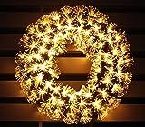 pre-lit white Color LED Fiber Optic Christmas Wreath (24in, warm white)