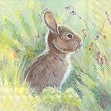 Ideal Home Range 20 Count Luncheon Napkins, Rabbit