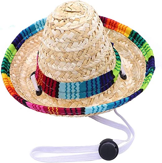 sombrero hat for chihuahua