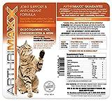 ArthriMAXX Joint Supplement and Wellness Support