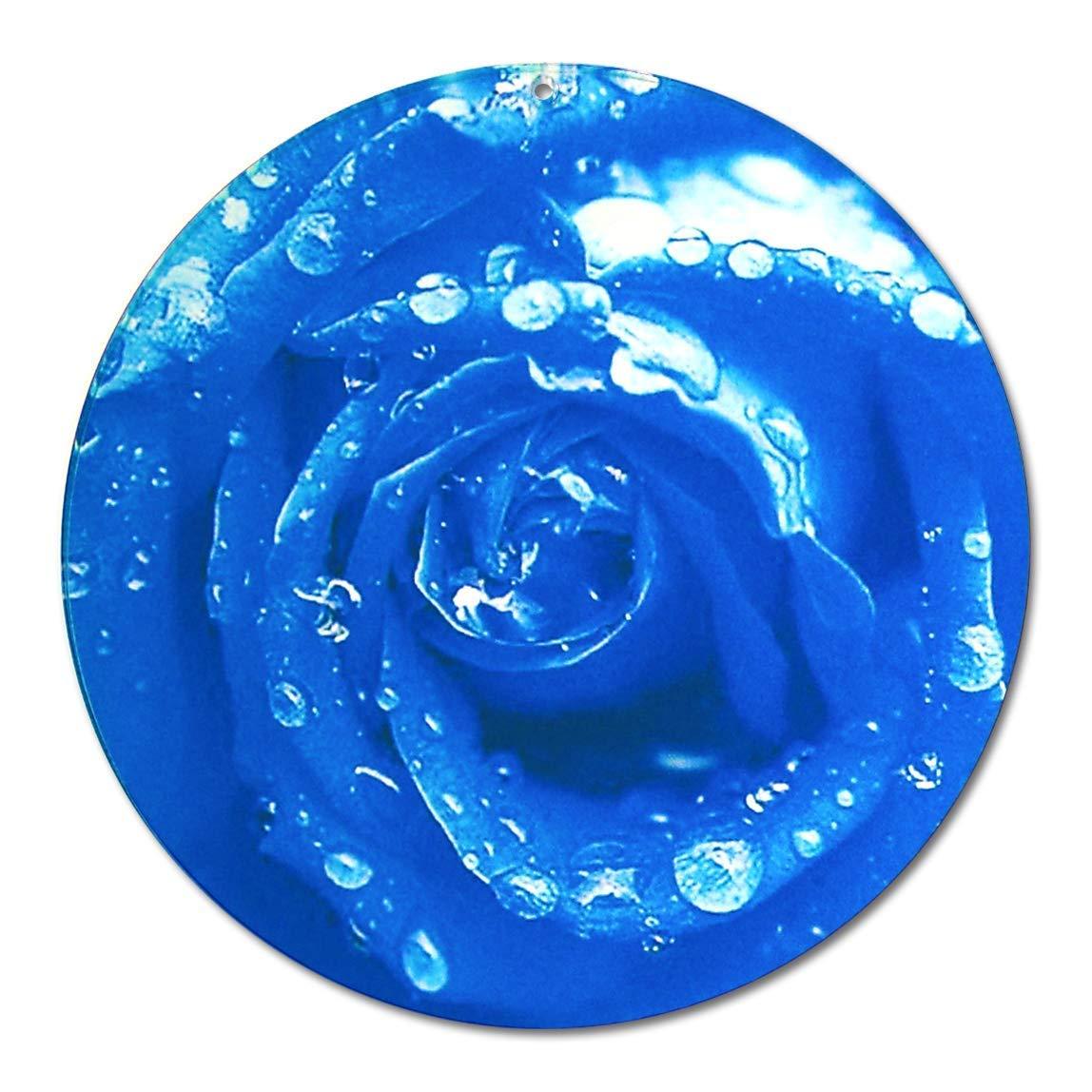 Sonnenf/änger Rose blau Nr 25 EINWEG Verpackung /Ø 10cm Blumen Pflanzen Natur Aufh/änger Fensterbild bruchsicheres Acrylglas Suncatcher Blickfang Geschenk Dekoration
