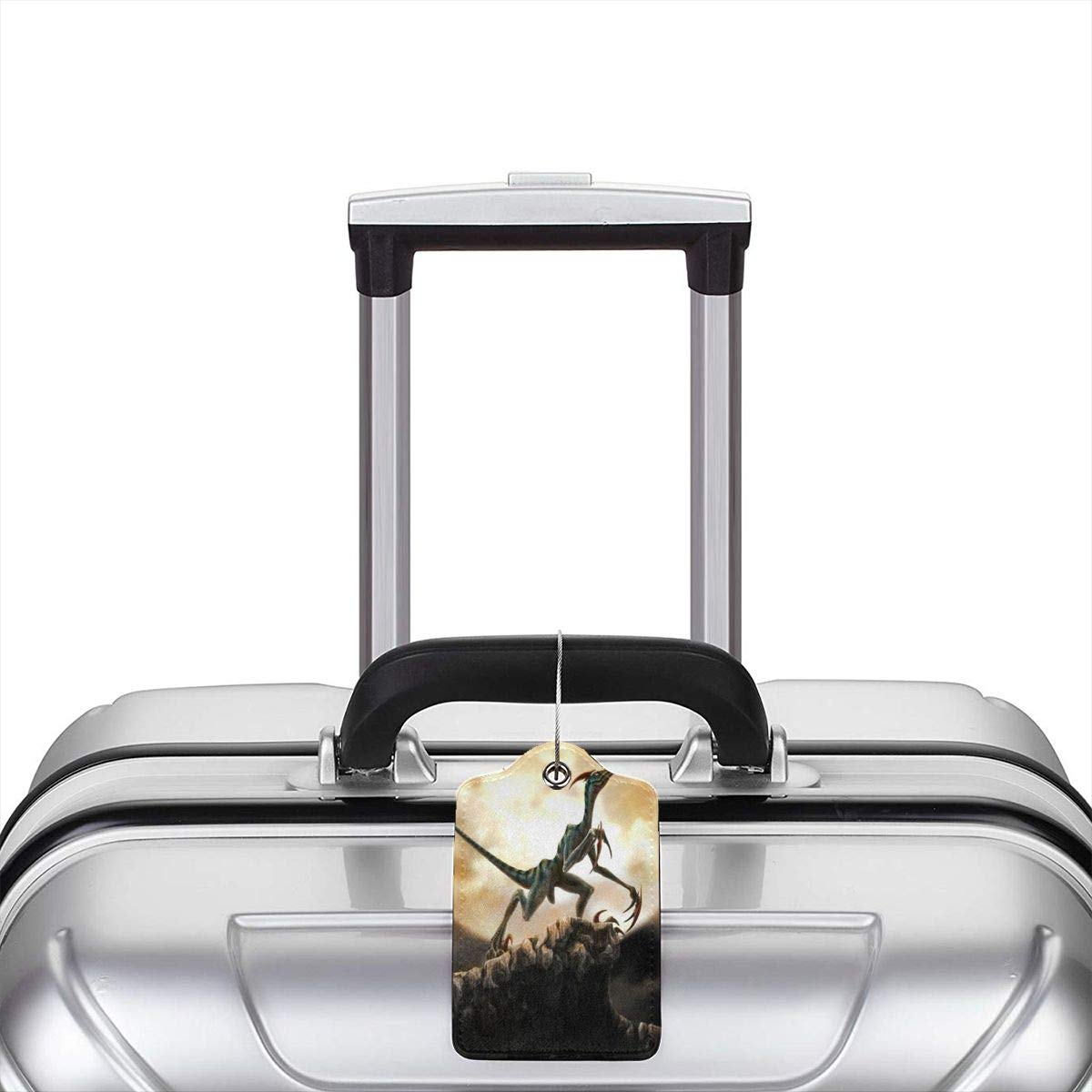 Cool Dinosaur Luggage Tag Label Travel Bag Label With Privacy Cover Luggage Tag Leather Personalized Suitcase Tag Travel Accessories