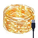 Fairy Lights 100 Micro LED Waterproof Copper Wire Lights, LifeBee USB Powered 10m / 33ft Starry String Lights, Decorative Rope Lights for Christmas, Party, Valentine's Day, Wedding, Festival