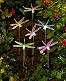 6-Pc. Solar Lighted Stake Set (Dragonfly)