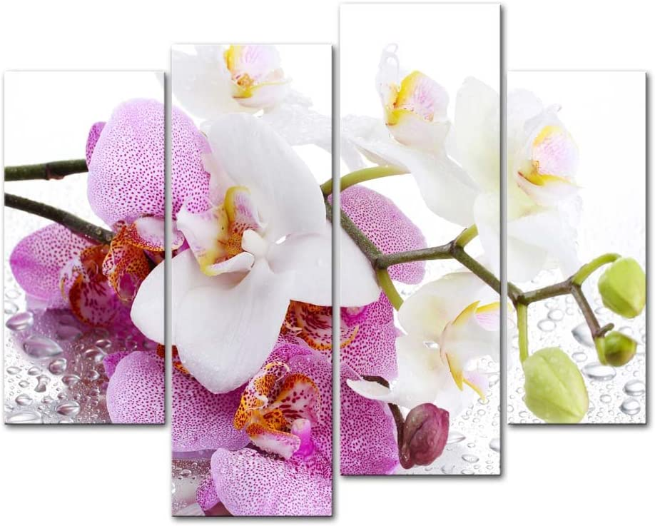 My Easy Art- Orchid Wall Art Decor Pink and White Flower with Drop of Water Canvas Pictures Artwork 4 Panel Plant Painting Prints for Home Living Dining Room Kitchen