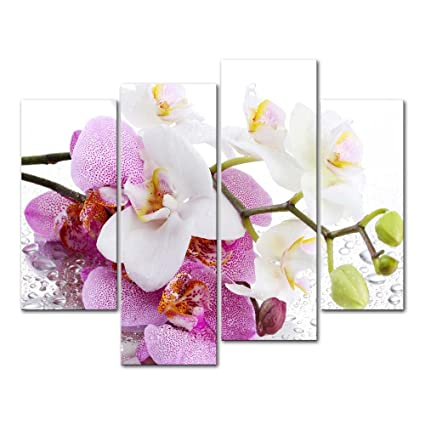 4 Pieces Modern Canvas Painting Wall Art The Picture for Home Decoration  Butterfly Orchid in Pink and White with Drop of Water On White Background  ...