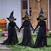 BSJJY Visiting Light-Up Witches with Stakes, Hand-held Hands Screaming Witch Sound Activation Sensor, Life-Size Decoration Suitable for Family Outdoor Party (Contain 3:Lighting + Hat + Clothing)