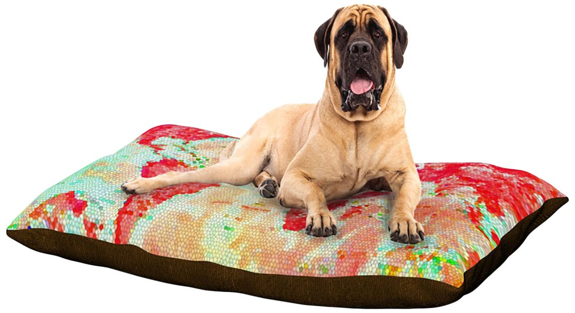 X-Large 40\ Kess InHouse Alison Coxon Oh The Places We'll Go  Fleece Dog Bed, 30 by 40-Inch, World Map