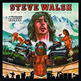 Schemer Dreamer by Steve Walsh (2010-07-13)