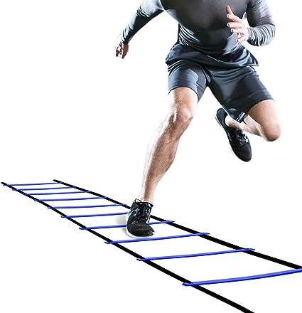 Workout ladder