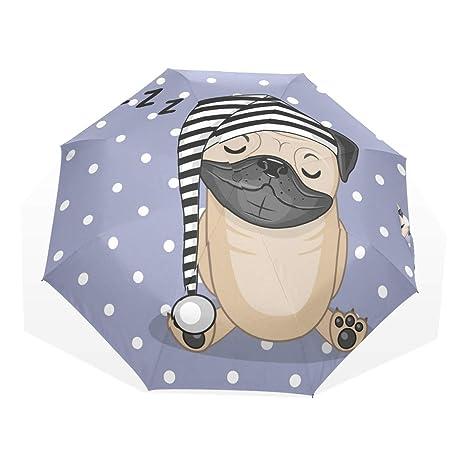 EZIOLY - Paraguas de Viaje para Perro con Paraguas Ligero y ...