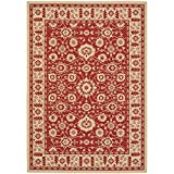 Safavieh Courtyard Collection CY6126-28 Red and Cream Indoor/Outdoor Area Rug (6'7″ x 9'6″) Review