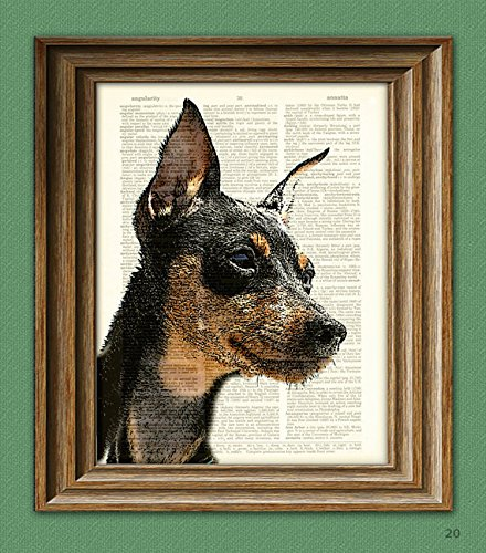 Miniature Pinscher Min pin dog beautifully upcycled vintage dictionary page book art print ()