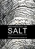 Archaeology of Salt : Approaching an Invisible Past, Brigand, Robin and Weller, Olivier, 9088903034
