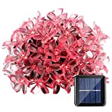 Qedertek Flower Solar Outdoor String Lights, 21ft 50 LED Fairy Blossom Christmas Lights Halloween Lights Decorative Lighting for Indoor, Home, Garden, Patio, Lawn, Party and Holiday Decoration (Red)