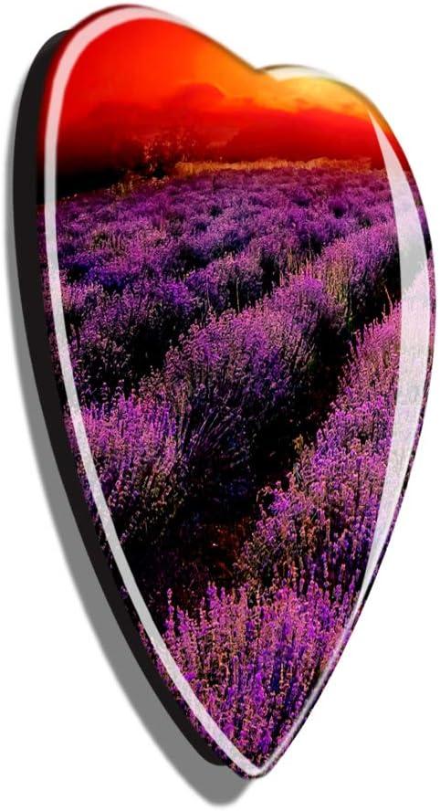 Hqiyaols Souvenir France Lavender Provence R/éfrig/érateur Aimant Forme de Coeur Le Cristal Autocollant de R/éfrig/érateur Voyage Cadeau Objets de Collection Souvenir