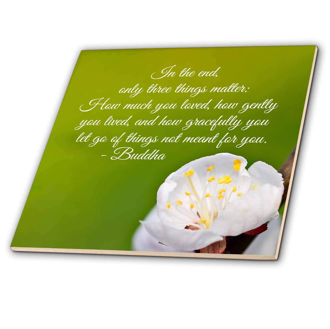 ct/_290879/_4 in The end only Three Things Matter 3dRose Alexis Design Quotes Inspirational Inspirational Buddha Quote 12 Inch Ceramic Tile