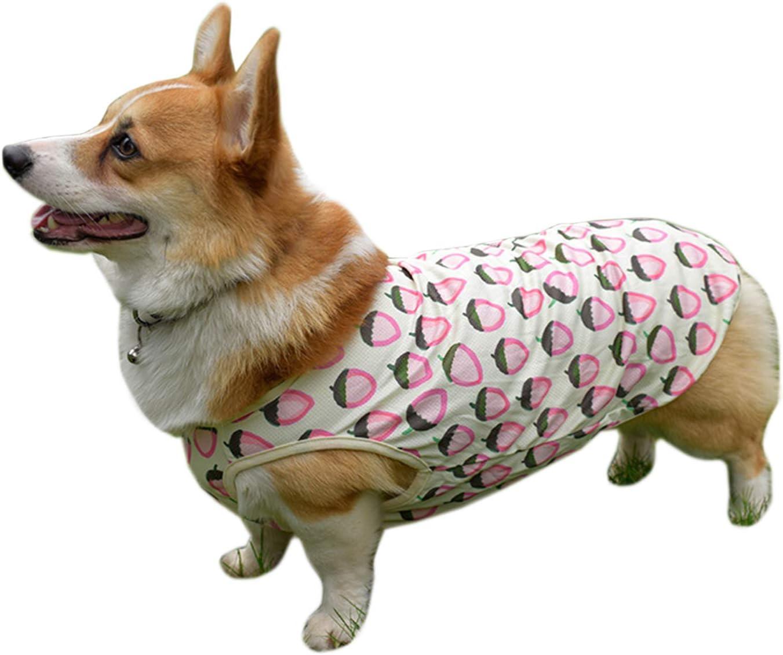 Alfie Pet - Dewi Cooling Vest for Dogs