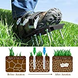Lawn Aerator Shoes with 3 Gardening Tools