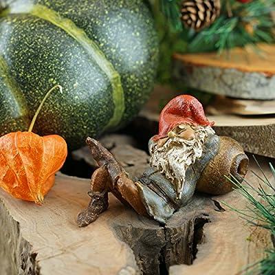 Top Collection Miniature Fairy Garden and Terrarium Garden Gnome Napping Statue: Garden & Outdoor