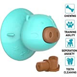 EGYPHY Dog Chew Toy, Dog Lick Molar Toy,2020 New Suction Cup Dog Toy Slow Feeder for Dog Bathing, Grooming, and Dog Training with 3 Pcs Dog Treats