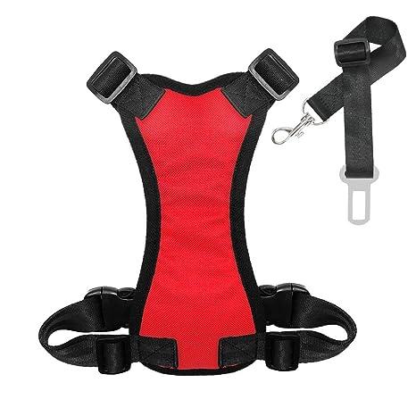 ShunHoo Cinturón de Seguridad para Perros de Nylon, Malla Perros ...
