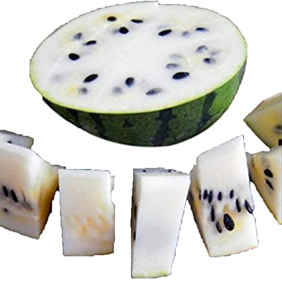 LEANO 10 pcs/Bag White Watermelon Seeds Home Garden Plant Seeds Fruits : Garden & Outdoor