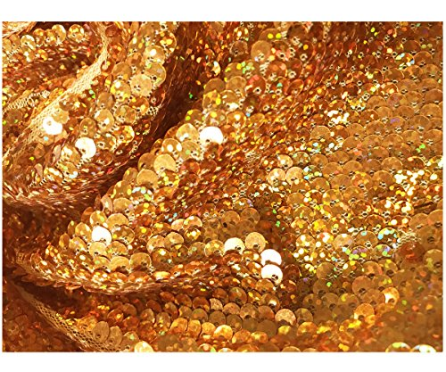 Sparkle Gold Glitter Dot Sequins Holographic Laser Mermaid Scale Fabric Stripe Mesh Backing Sold by Half of Yard ()
