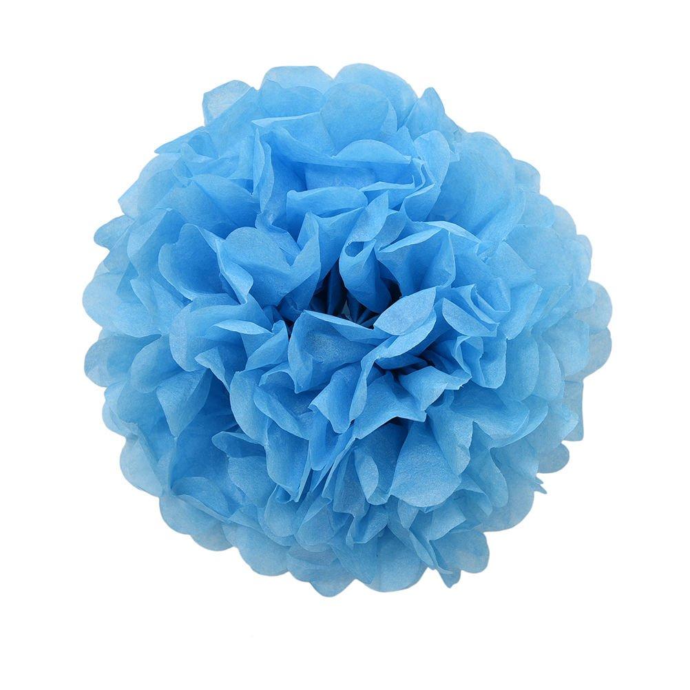 20x pompon papier de soie (disponible en 12couleurs, Diametro: 25cm, idéal pour décoration mariage, fête, etc. rose Diametro: 25cm Sky