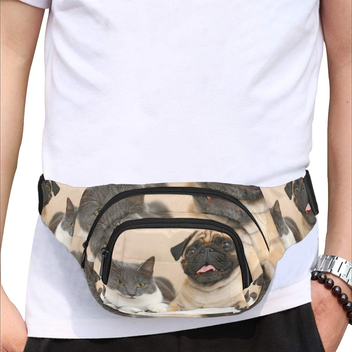 Pug And Cute Cat Sitting Together Fenny Packs Waist Bags Adjustable Belt Waterproof Nylon Travel Running Sport Vacation Party For Men Women Boys Girls Kids